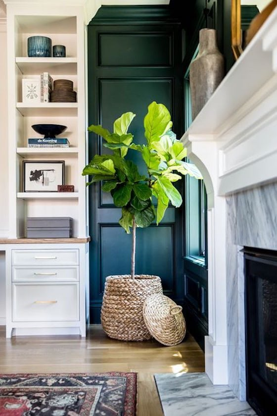 Green walls with white trim