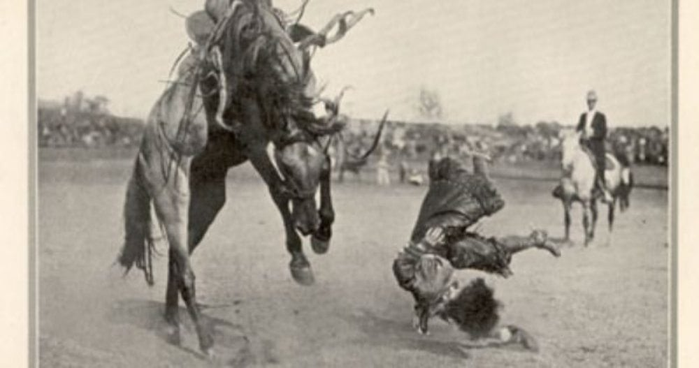 AUTHOR, DR. BARBARA BERGIN, FALLING OFF HER HORSE IN HER EARLY DAYS OF RIDING